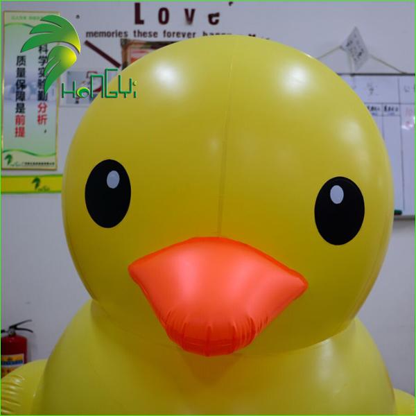 yellow duck (4).jpg