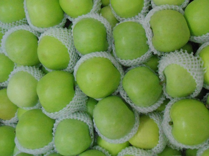 Hot sale fresh apple fruit for sale in high quality as a supplier in china