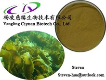 Factory Supplies 100% Top Quality Natural Seaweed Extract, Fucoxanthin