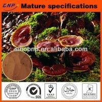 Reishi Mushroom Extract Spores Powder