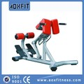 equipo de gimnasio romano silla ax9836
