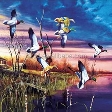 beautiful swan 3d lenticular nature frameless picture