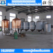 stainless steel 500L per day ale beer brewing equipment,industrial beer fermenting equipment