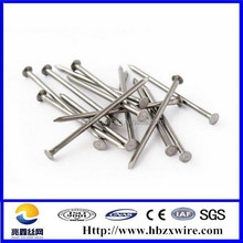 Widely use common wire nails manufacturers in china