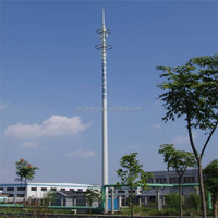 Cheap Galvanized Steel telecommunication Camouflaged palm tree tower Cell Phone tower fake tree tower China manufacturer