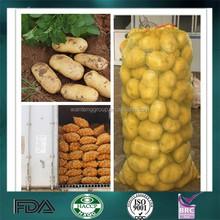 fresh dutch potato
