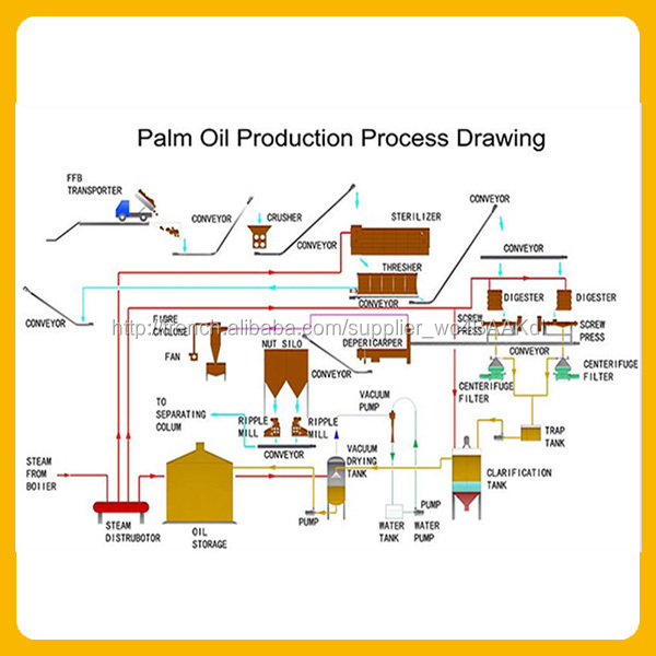 Iuil business plan image 3