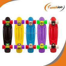 Penny style longbaord skateboard, plastic longboard