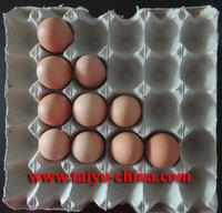 waterproof 30 pulp paper egg tray