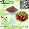 ( canada importados cranberry) suco de fruta concentrado de suco de cranberry