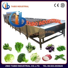 CE Certification and Electrical Power Source fruit vegetable washer ozone