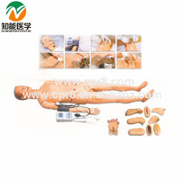 Advanced full-featured nursing training manikin(with blood pressure measurement) BIX-H2400
