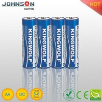 AA size, LR6, 1.5V alkaline battery