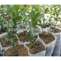 Waterproof Roofing UV Agricultural Agriculture Nonwoven Fabric Protection Cloth