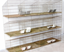 plastic rabbit cage trays sold to Russia