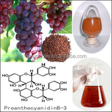 Grape Seed Extract 95% proanthocyanidins for Nutritional Supplements