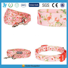 Pet 3/4-Inch Spring Scent Inspired Floral Rose Basic Polyester dog collar with leash