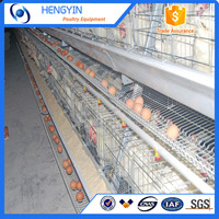 Poultry farming equipment chicken battery cages / chicken laying cages
