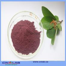 Factory supply bilberry fruit extract