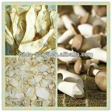 Pleurotus Eryngii mushroom slice and whole