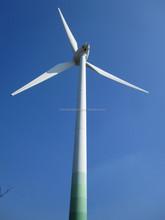 Variable Pitch Blades Wind Generator /Wind Turbine