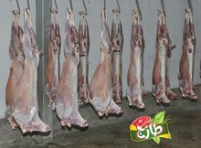Frozen Halal Mutton (Goat)