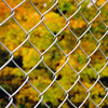 Hot Sale Security Fence / Garden Fence / Chain Link Fence for Playground, Countyard,Park,Lawn,Forest