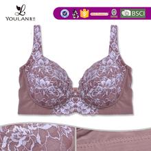 elegant new fashion embroidery professional sexy half cup bra