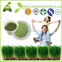 Pure High Quality pure natural wheat grass Powder 100-200mesh