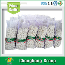 Hot sale Natural garlic with high quality
