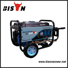 BISON(CHINA) Egypt market Gasoline Generator, portable generator 2KW with CE