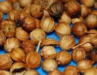 Plant Extract Therapeutic Grade cilantro coriander oil compound