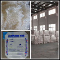 201*7 Pure Water Strong Base Ion Exchange Resin