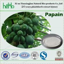 Tropical Papaya Papain Enzyme