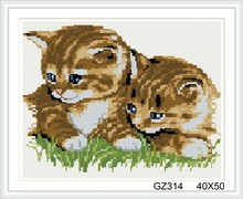 square cat photo diamond painting with wooden frame xinshixian paint boy brand GZ314