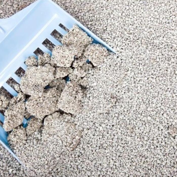 Bulk clumping cat litter