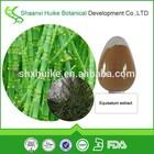 Natural extrato de cavalinha 7% de ácido silícico pó