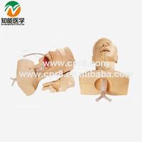 Senior Sputum Suction practice model(medical training manikin) BIX-H85
