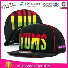 Fashion custom brand hip hop cap