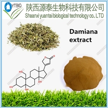 100% Natural Damiana Leaf Extract For Herbal Sex Medicine Damiana Extract Powder Damiana Extract