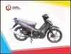 newest high quality 110cc VEGA RR C9 cub motorcycle