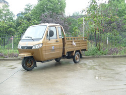 3 wheel rickshaw motorized tricycle for adluts