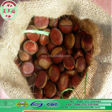 the asian food products fresh chinese preserved chestnut in jute bag 80kg