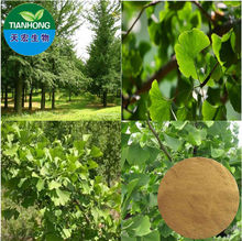 Pure Natural Ginkgo Biloba Extract