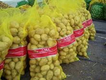 new crop potatoes best price