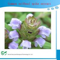 Common selfheal spike extract