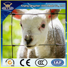Cheap Simple Woven wire mesh goat wire fence panel hot sale