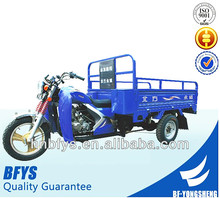 HOT SALE IN Asia 3 wheel motorcycle for cargo