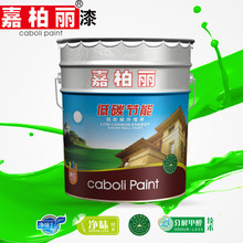 Caboli Acrylic Exterior Wall Paint For DIY with oil pollution prevention