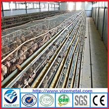 alibaba china supplier galvanized steel quail cage/quails 240 per set quail cage price/quail cage guangzhou